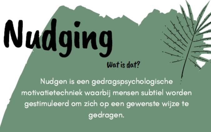 Blog - Nudging | VeldMark